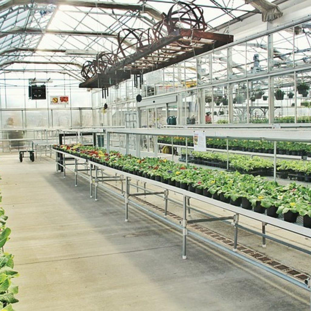 greenhouse 3247271 640 1024x1024 - News & Articles